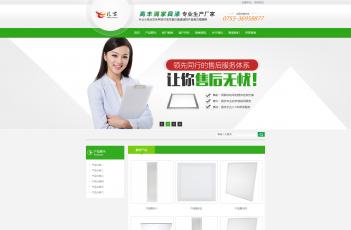 电子行业营销模板